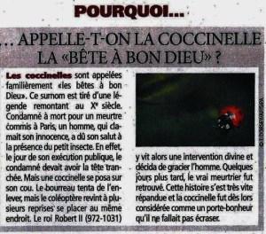 """Pourquoi... ...appel-t-on la coccinelle la """"bête à bon dieu"""" (foto Wikipedia)"""