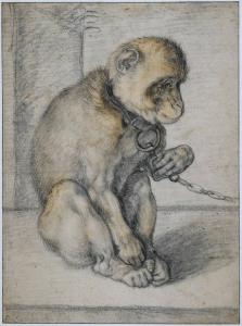 Hendrick Goltzius - Geketend aapje (foto Behoud Blauwe Golven Arnhem)