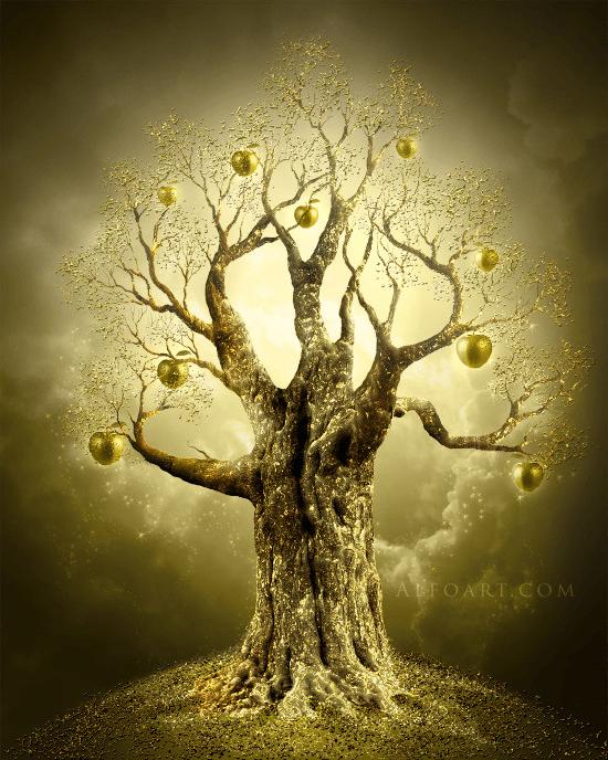 Image of a Golden Apple Tree (foto Alfo Art)