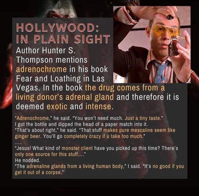 Hollywood in Sichtweite (Foto Grey Worm)