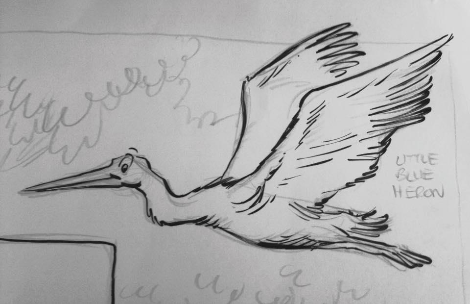 2016-0613-Heron
