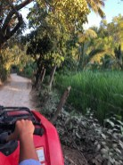 The local Uber, an ATV for 50 pesos each.