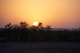 Sunrise in the Tuli wilderness