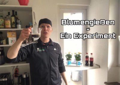 Blumengießen – Ein Experiment!