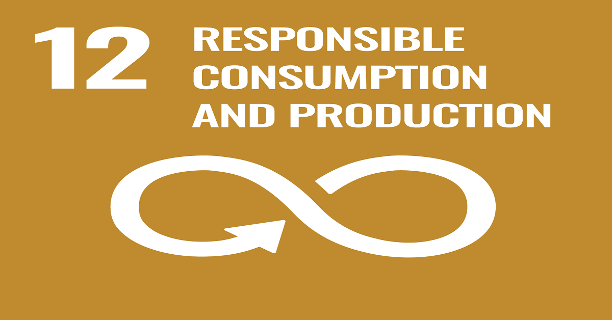 SDG12