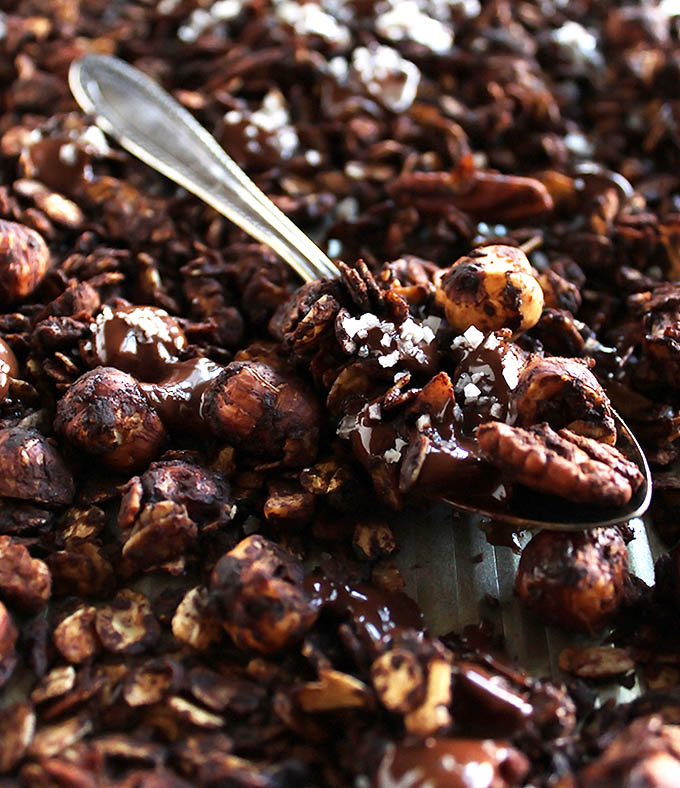 Crunchy Chocolate Hazelnut Granola - crunchy oats, hazelnuts, and pecans coated in cocoa powder with clusters of salted chocolate. This recipe is perfect for snacking or as a dessert. Great for fall or winter! gluten free/ refined sugar free | robustrecipes.com