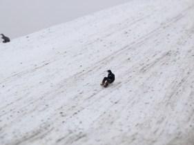 snow-northolt-edit-021-lowres