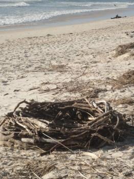 Storm debris 'basket'
