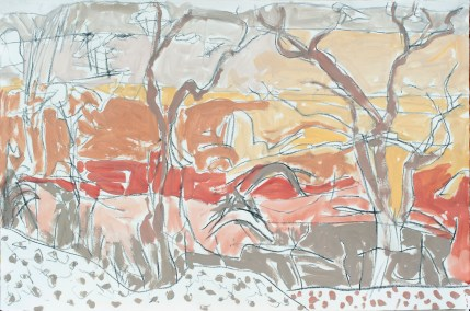 Homestead Creek II_2016_acrylic and charcoal on Hahnmuhle paper_80x120cm