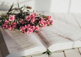 The (In)courage Devotional Bible Review