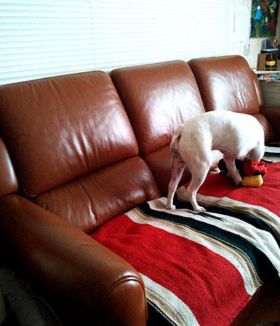 【インテリア】 ソファーカバーにおすすめ!EL PASO saddle blanketのニューダイヤモンドブランケット(ラグマット)
