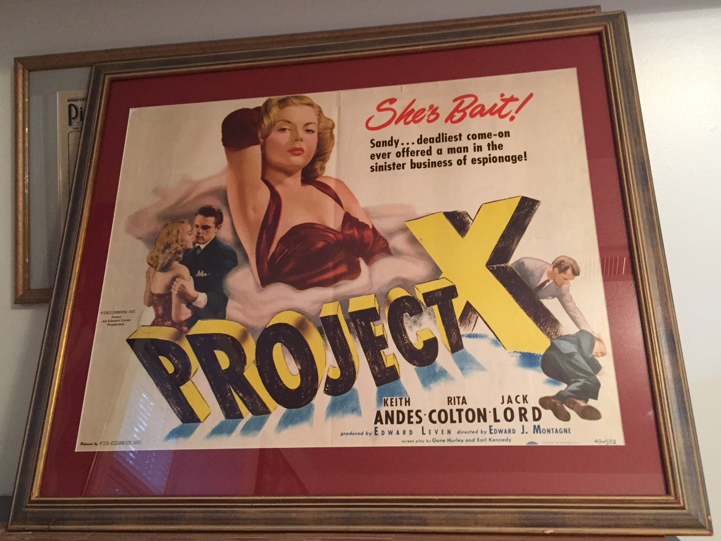 project x framed
