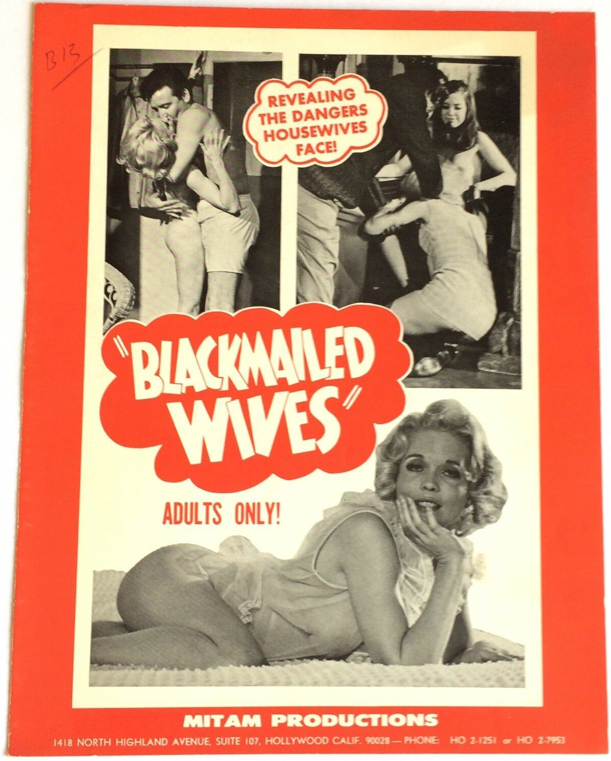 blackmailed wives pressbook