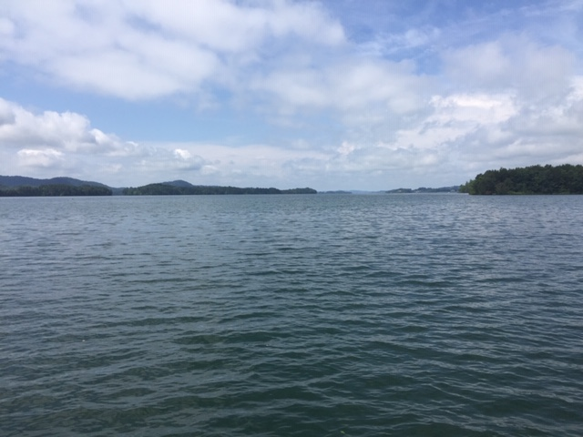 cherokee lake looking straight from dock