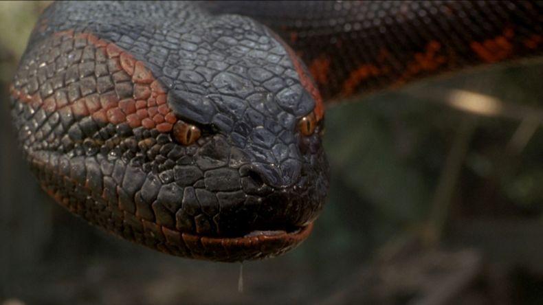 Fotograma de la película Anaconda