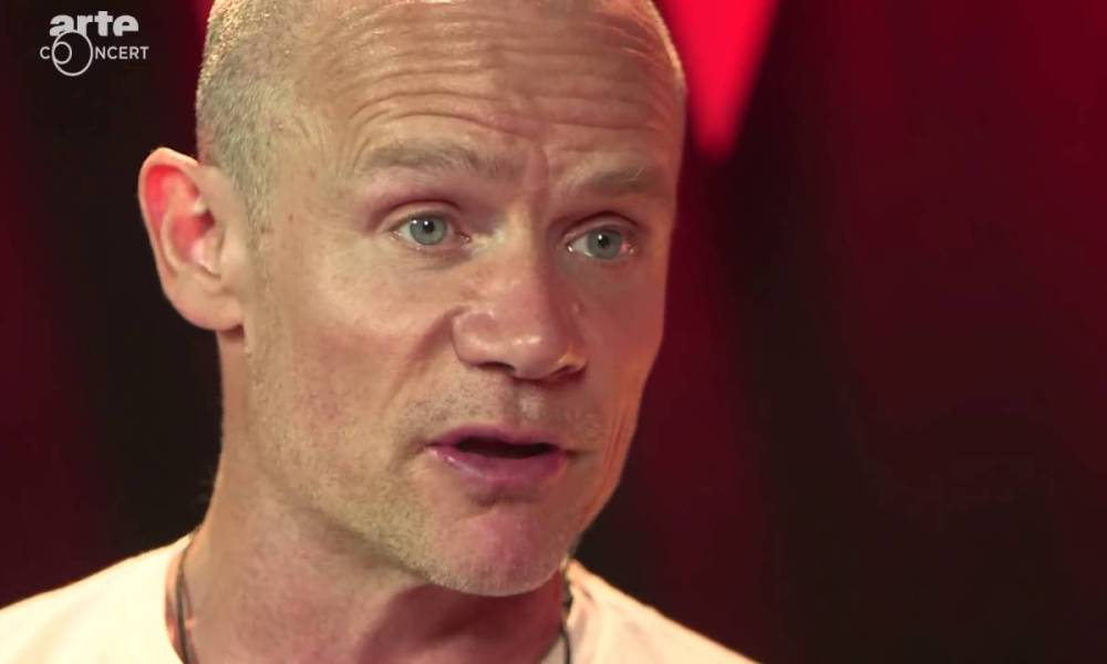 Flea about Donald Trump