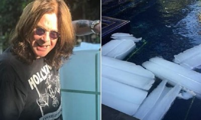 Ozzy puts ice on the pool