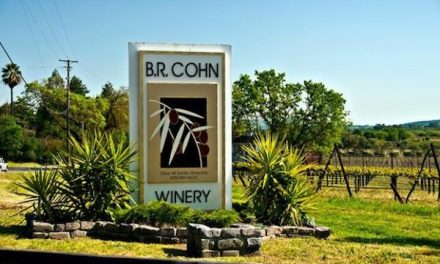 "B.R. Cohn Winery, Founded By The Manager Of ""The Doobie Brothers"""