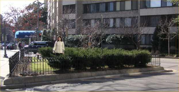 Sonny Bono Memorial Park