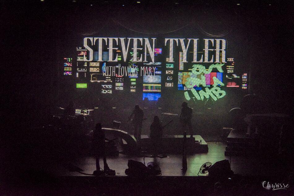 Steven Tyler DSC_3006-1