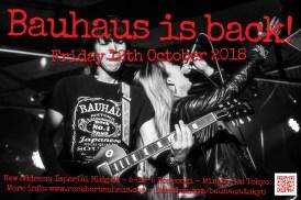 Bauhaus is Back 3