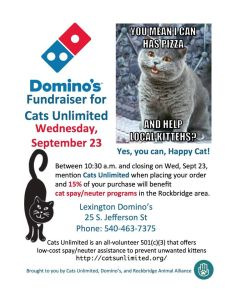 DominosFlyerSeptember2015