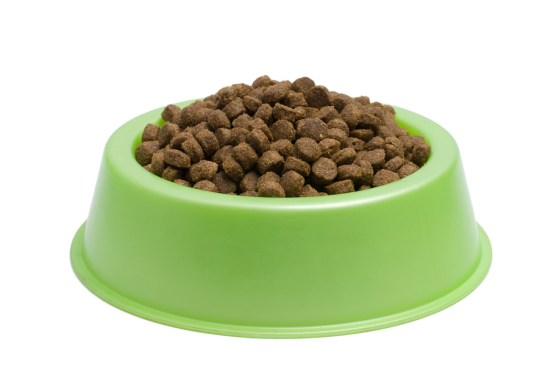 dog-feding-bowl
