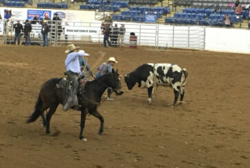 """Bulls, Barrels, and Broncs"" come to the Horse Center"