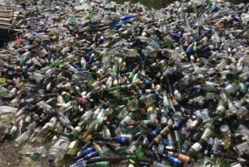 Lexington City restarts its curbside glass recycling service