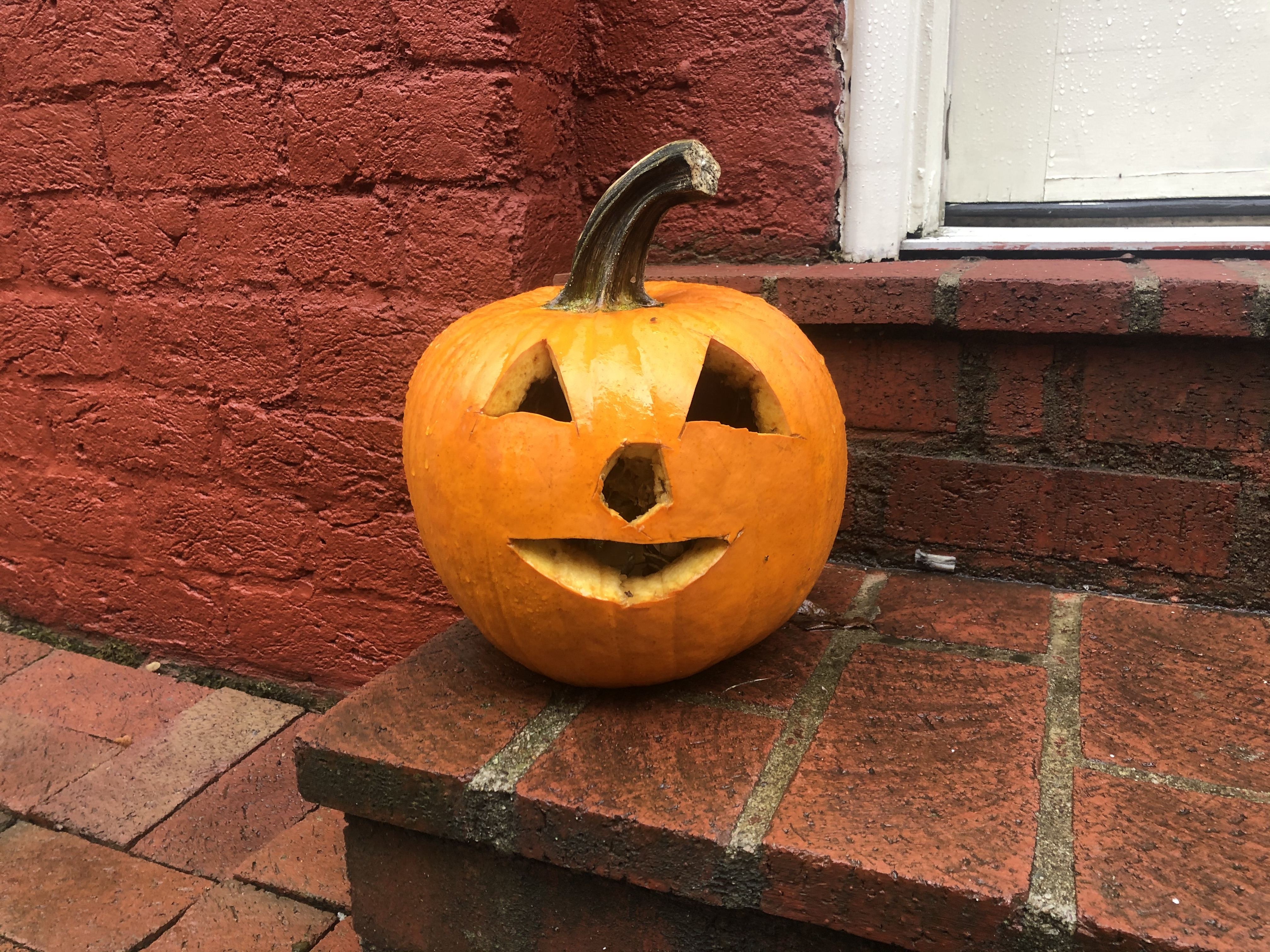 Spooky Spirit Spreads To Lexington Homes And Businesses