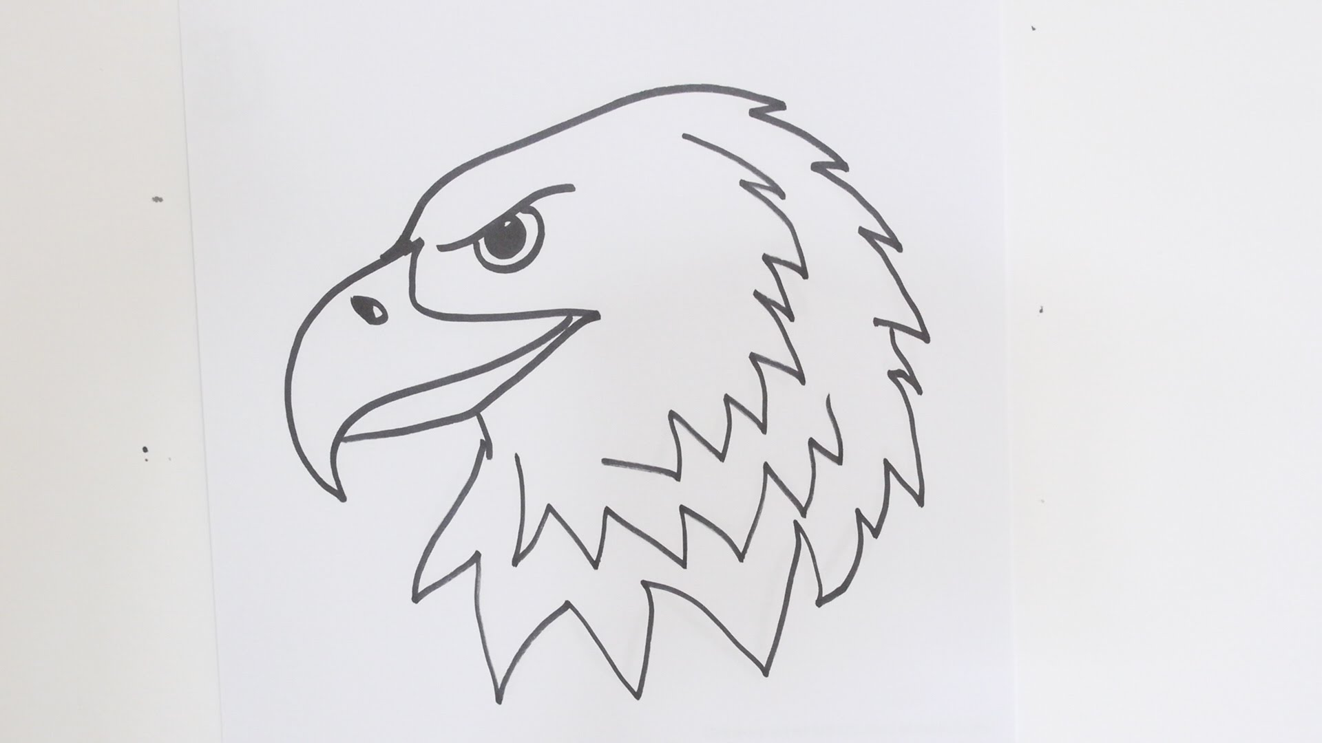 How To Draw An Eagle Head Step By Step Easy Video Tutorial