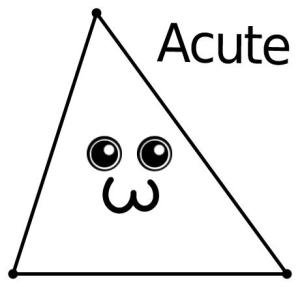 how to draw an acute triangle