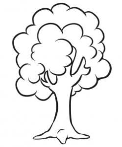 how to draw and sketch a simple tree