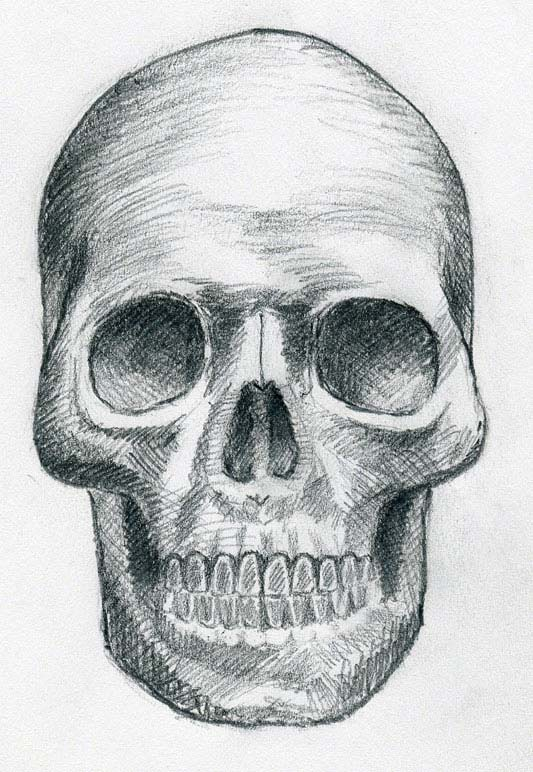 How to draw a skull step by step for beginners easy with pencil video tutorial