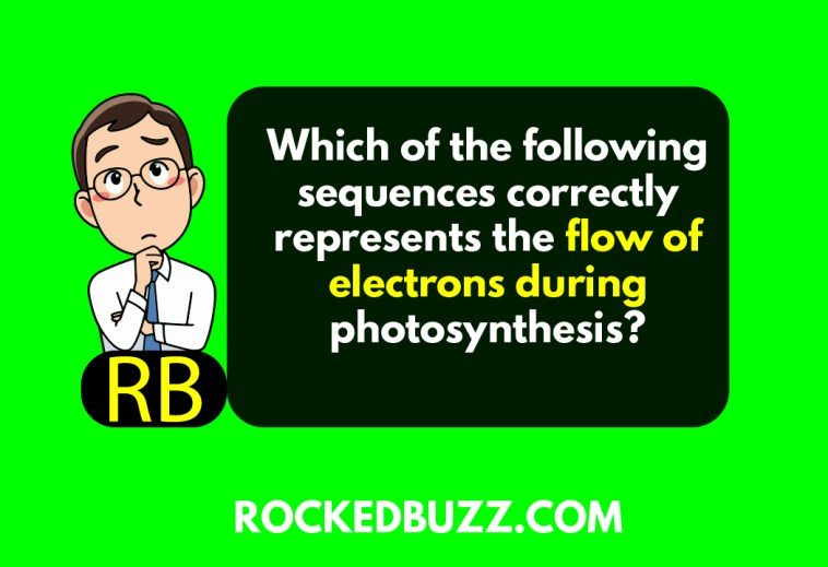 which of the following sequences correctly represents the flow of electrons during photosynthesis?
