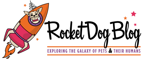 rocket dog blog