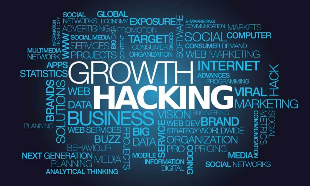 Growth Hacking - Hype vs Results