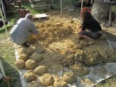 Forming the cob in to balls to be used for the pizza oven building blocks