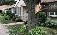 Storm Damage at Rockhaven