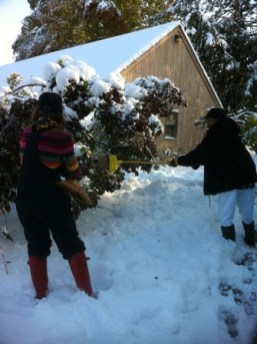 Oct Snow Residents Brushing Off 2011 005