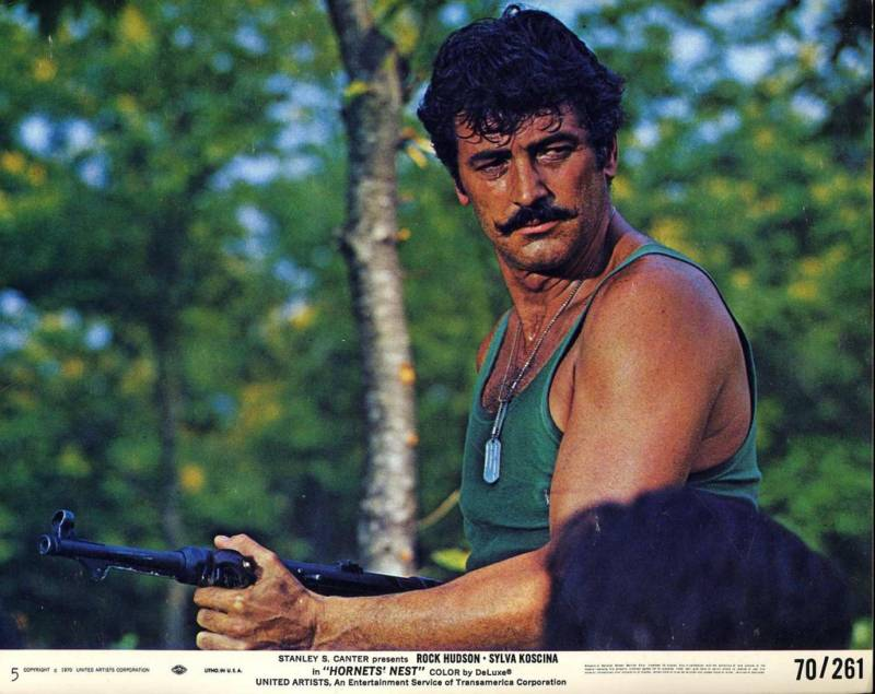 Picture Of The Week Hornets Nest Rock Hudson Blog