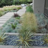 Texas Style Front Yard Landscaping Ideas 11
