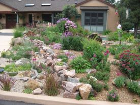 Texas Style Front Yard Landscaping Ideas 45