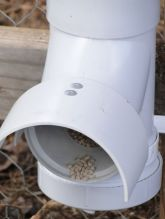 Chicken feeder from pvc 15