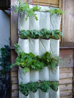 Simple Vertical Garden49
