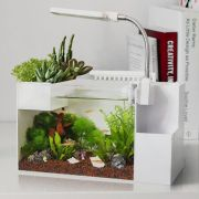 DIY Indoor Aquaponics Fish Tank Ideas 10