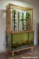 DIY Indoor Aquaponics Fish Tank Ideas 7