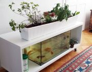 DIY Indoor Aquaponics Fish Tank Ideas 9