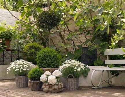 Small courtyard garden with seating area design and layout 107