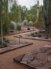 Stunning desert garden ideas for home yard 1